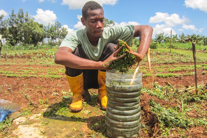 Nyota-Organic-Farming-6481