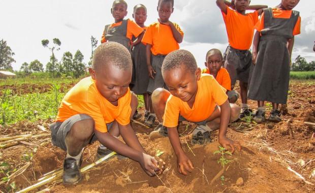 Nyota_Tree-planting-kenya-1296