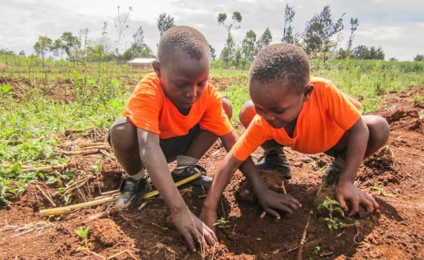 Nyota_Tree-planting-kenya-1297