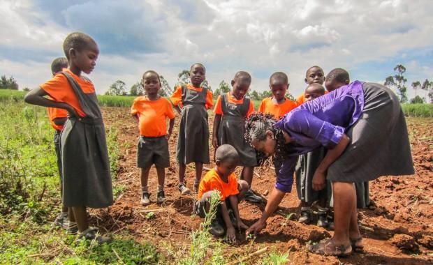 Nyota_Tree-planting-kenya-1307