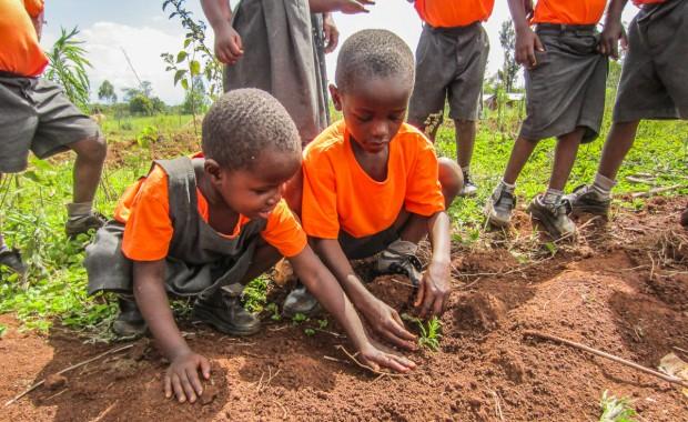 Nyota_Tree-planting-kenya-1313